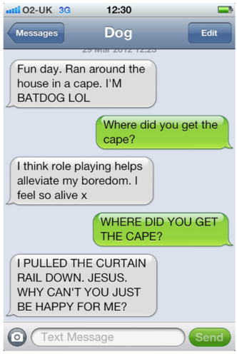 dog text.png