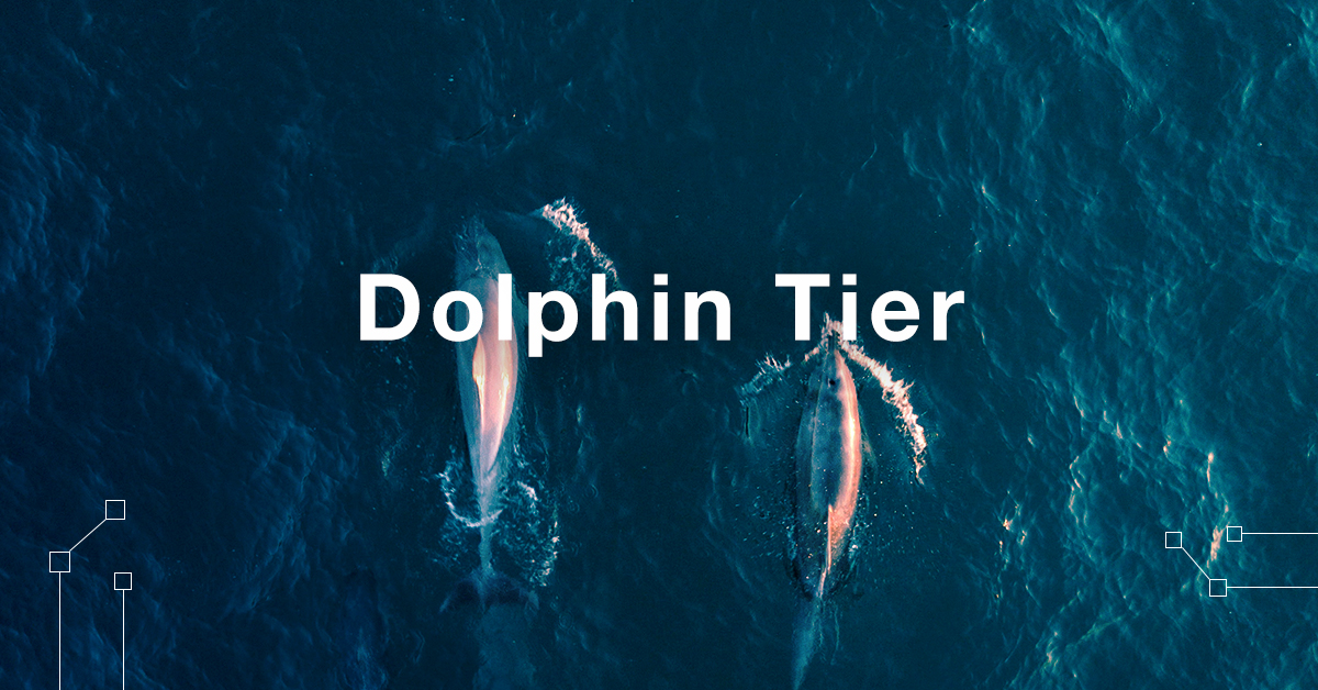 CanYaCoin is offering a Dolphin tier that is exclusive to our engaged community